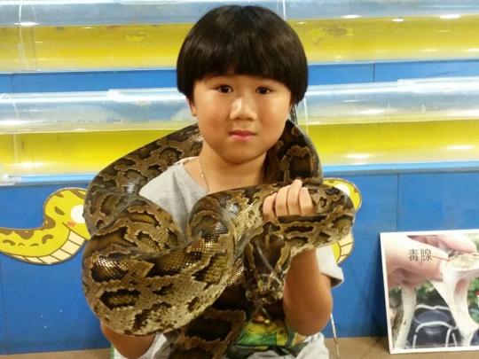 杰杰同大蟒蛇玩游戲