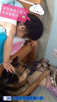 【狗與B】定驚新方法