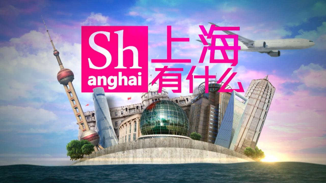 (國語)上海有什麼33