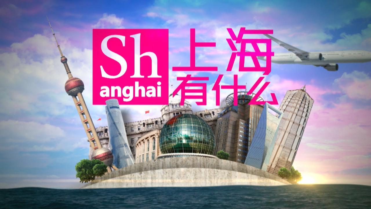 (國語)上海有什麼34