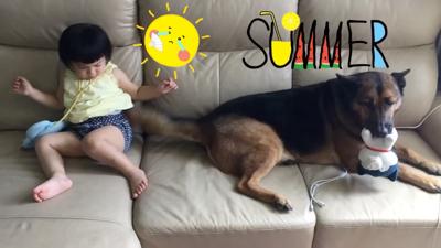 【狗與B】毛孩小孩相親相愛