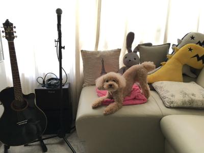 2017-07-19 譚偉權 GaryGorGor的深夜直播唱歌仔