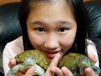 李芯瑀Cindy直播我家的小烏龜(≧ω≦)/