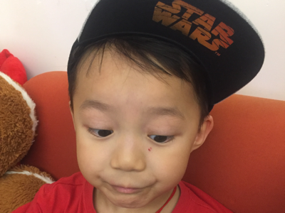 2017-07-25 LittleHysan 睇書
