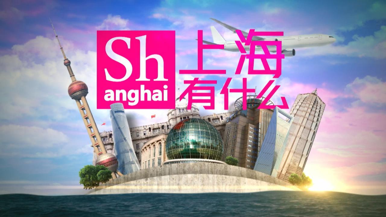 (國語)上海有什麼39