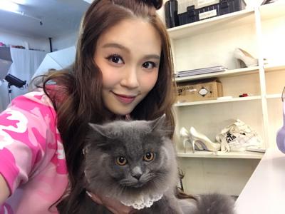 Guji 貓貓上鏡
