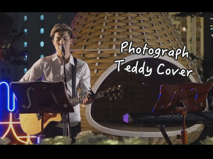 Photograph - Teddy Cover