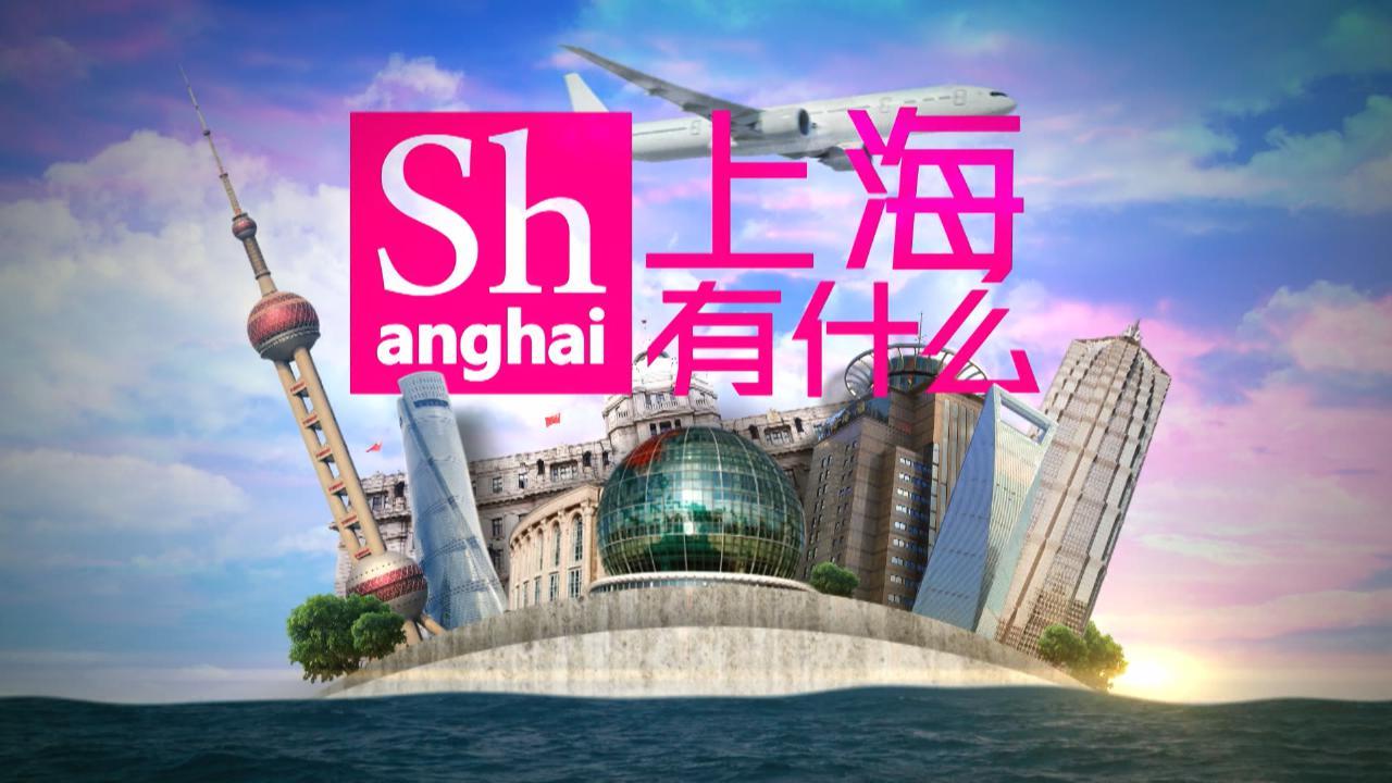 (國語)上海有什麼53