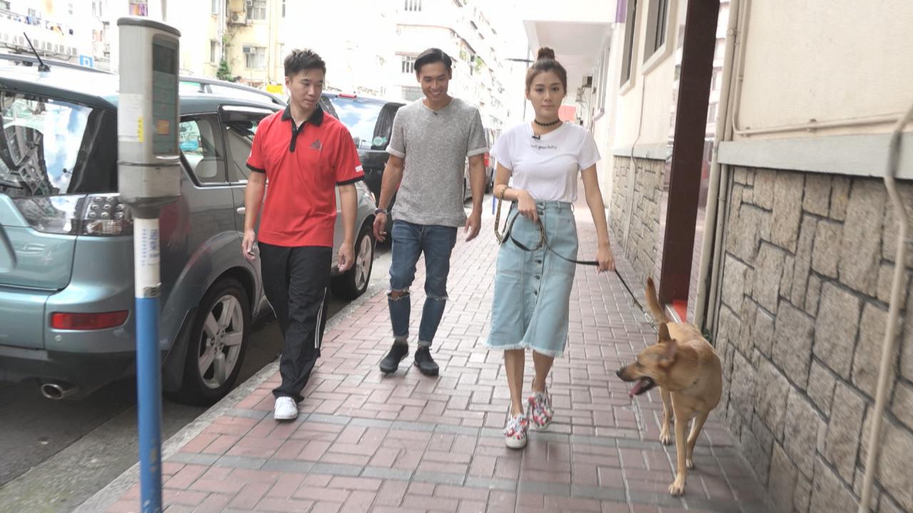 陳詩欣訓練狗狗速成班