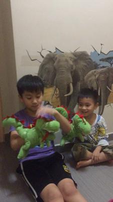 Aiden & Maxi - dinosaur puppets