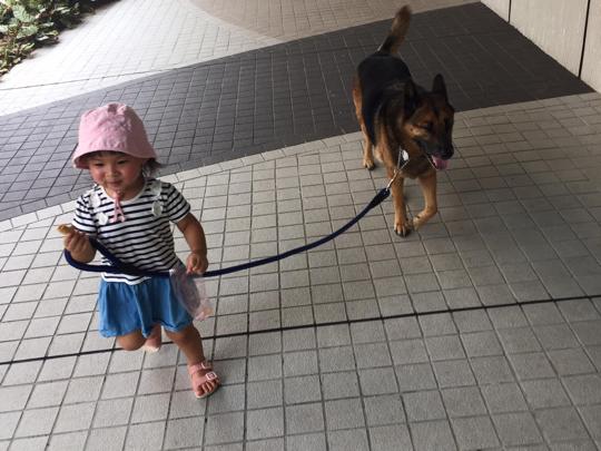 2歲放狗專員!天使毛孩與惡魔小孩