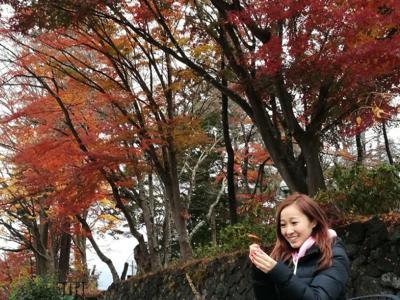 美棋BB的直播--東京富士山紅葉祭