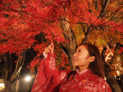 美棋BB的直播--富士山紅葉祭