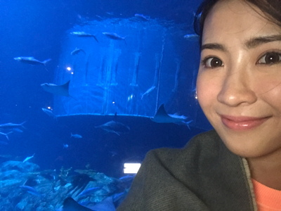 2017-11-28 利穎怡joan的海洋世界
