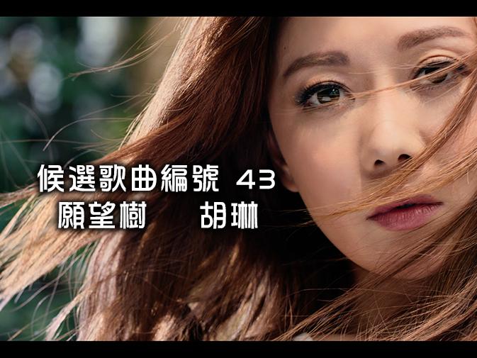 43.願望樹-胡琳