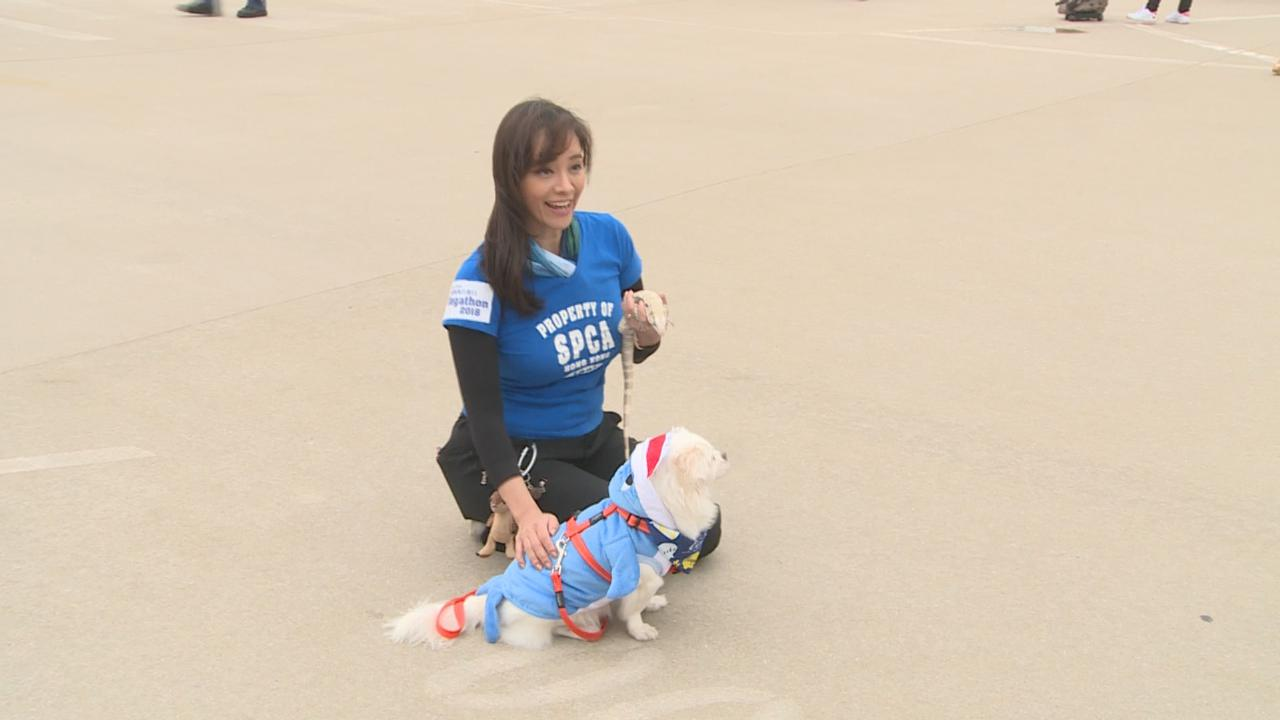 郭秀雲帶寵物出席慈善活動 望公眾認識接受爬蟲類動物