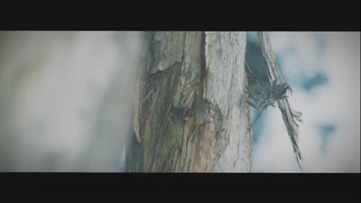 胡鴻鈞 - 今天之後 official MV