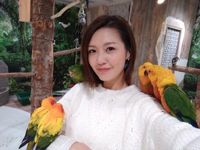陳庭欣 札幌 鸚鵡cafe 的直播