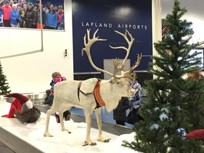 子博全家 終於到達Lapland@芬蘭