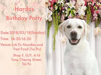 Hardos退休導盲犬?生日派對