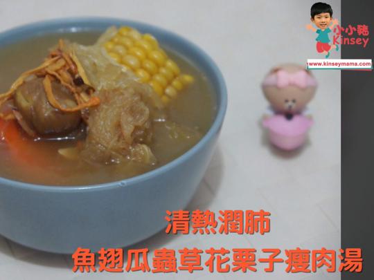 小小豬湯水篇 - 魚翅瓜蟲草花栗子瘦肉湯