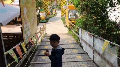 菠蘿園@有機薈低碳農莊