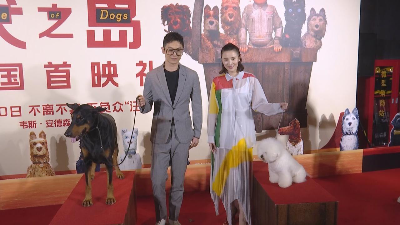 (國語)與朱亞文北京宣傳配音動畫 宋佳以搞笑方式作出推薦