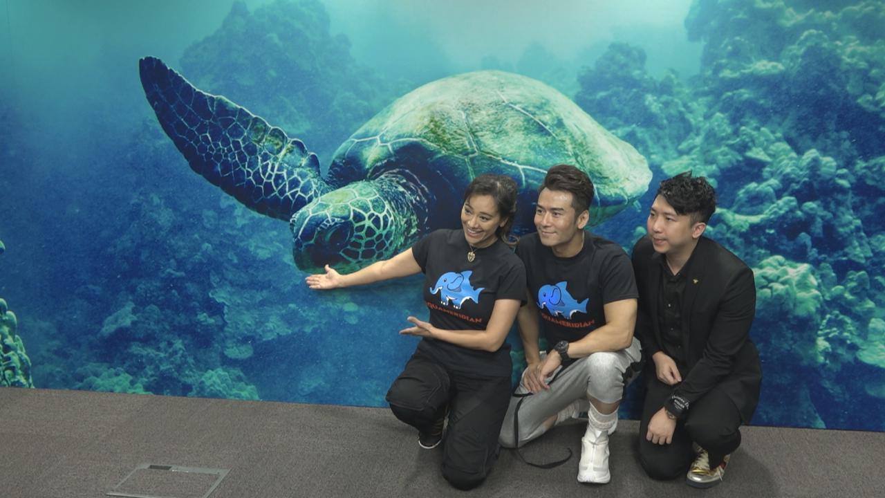 (國語)海龜交配期容易被快艇撞死 郭秀雲呼籲加大保育區
