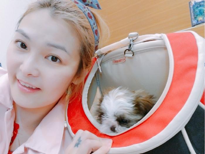姚安娜 同教父犬