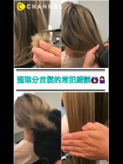 整理分岔髮的常犯錯誤