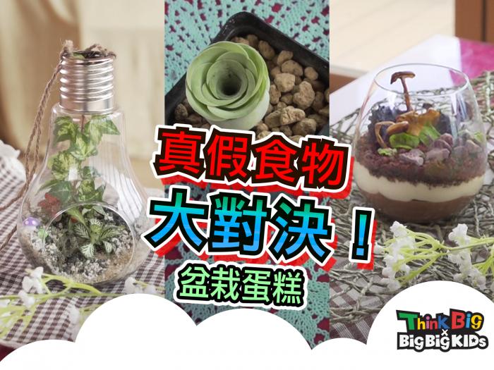真假食物大對決01 - 盆栽蛋糕