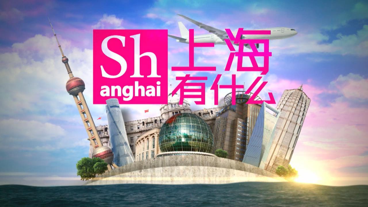 (國語)上海有什麼_朱家角