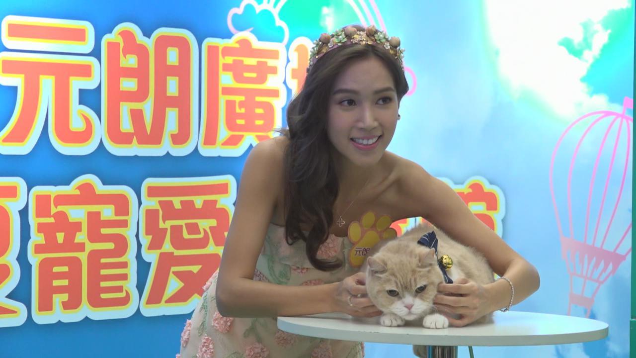(國語)傅嘉莉分享養貓經歷 對愛貓健康情況感自豪