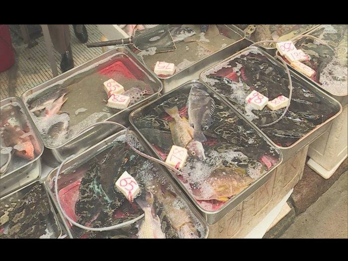 致癌淡水毒魚