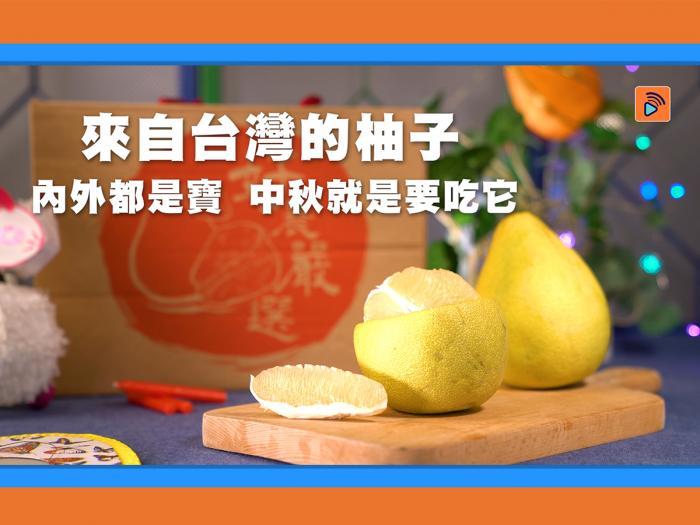 台灣特選麻豆文旦柚-中秋應節佳品/台灣好農_big big shop預購優惠