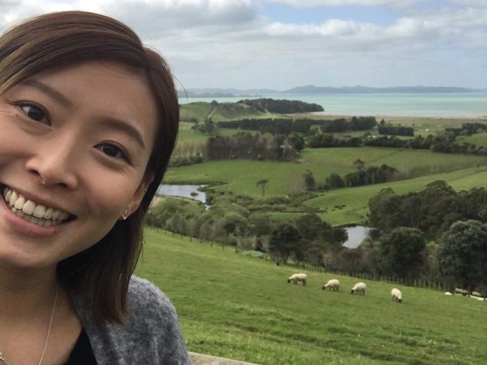 這是紐西蘭! welcome to New Zealand!