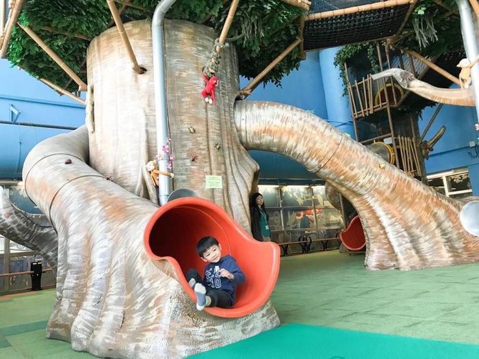 樹屋遊戲室