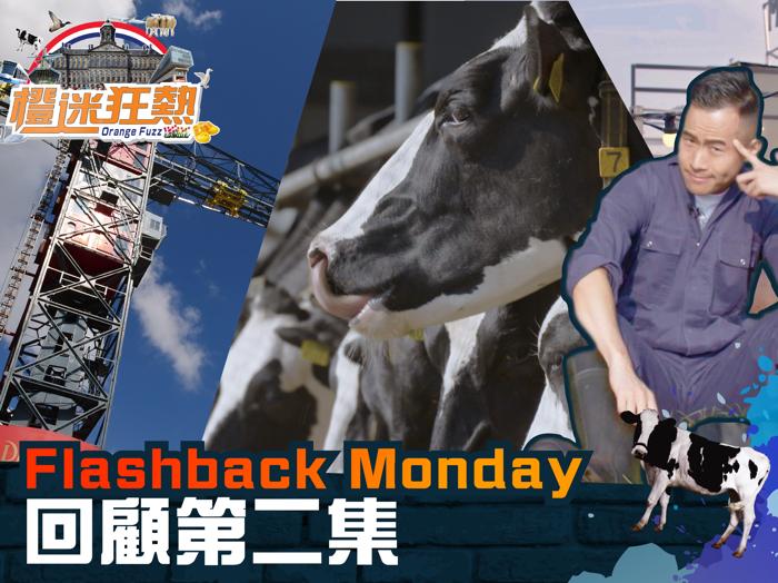 【Flashback Monday】回顧「橙迷狂熱」第二集