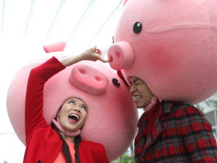 新春豬事丁:豬小姐與送水豬