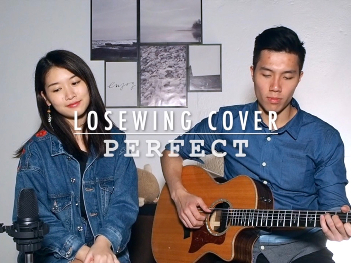 Lose Wing Cover - Perfect