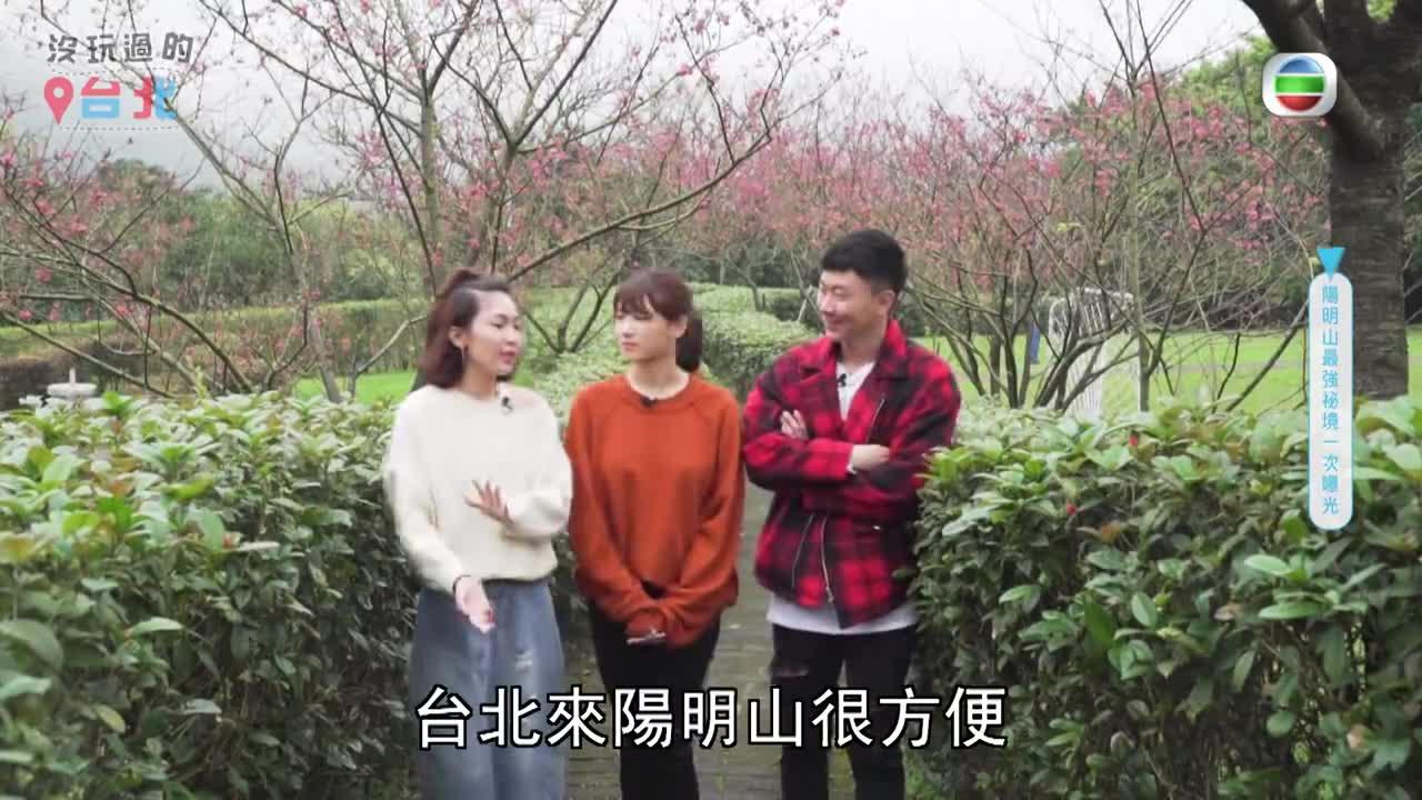 台灣陽明山最強秘景一次曝光