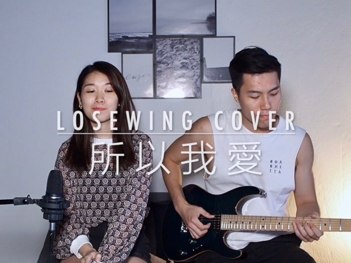 Lose Wing Cover - 所以我愛