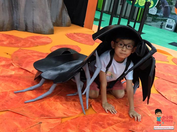 小小豬玩樂篇 - 變變變!MOVE生物體驗展 香港站