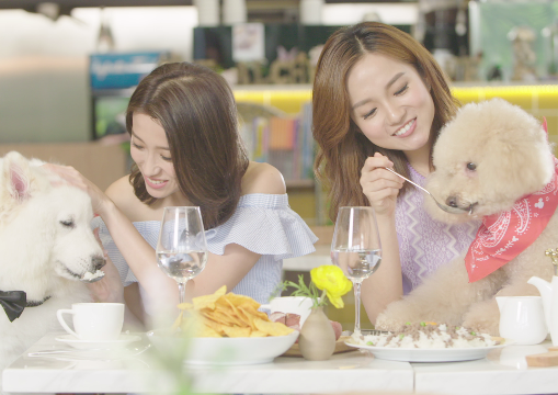 宣傳片:做寵物好幸福呀!