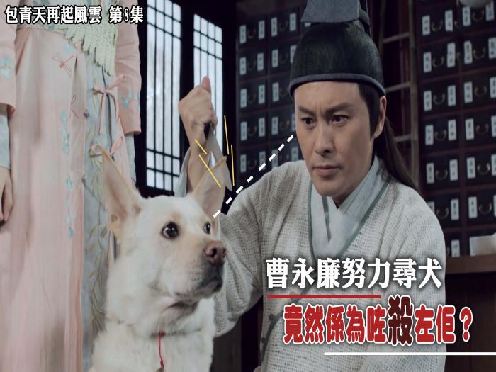 精華 曹永廉努力尋犬竟然係為咗殺左佢?