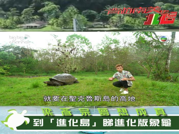 梁彥宗夢想成真 到「進化島」睇進化版象龜