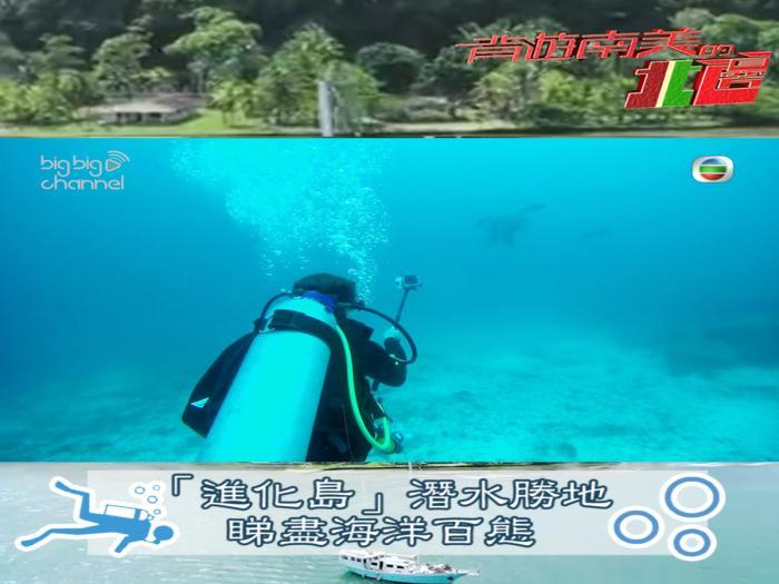 「進化島」潛水勝地 睇盡海洋百態