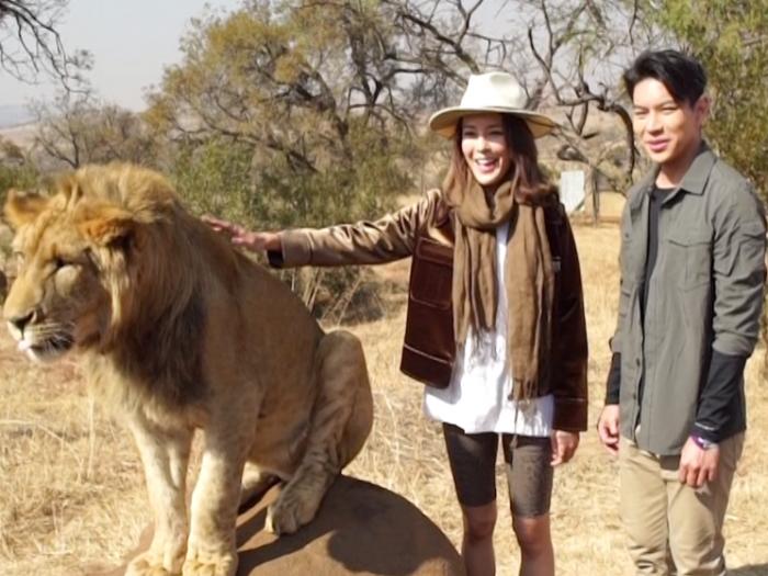 宣傳片:漫遊南非、韓國