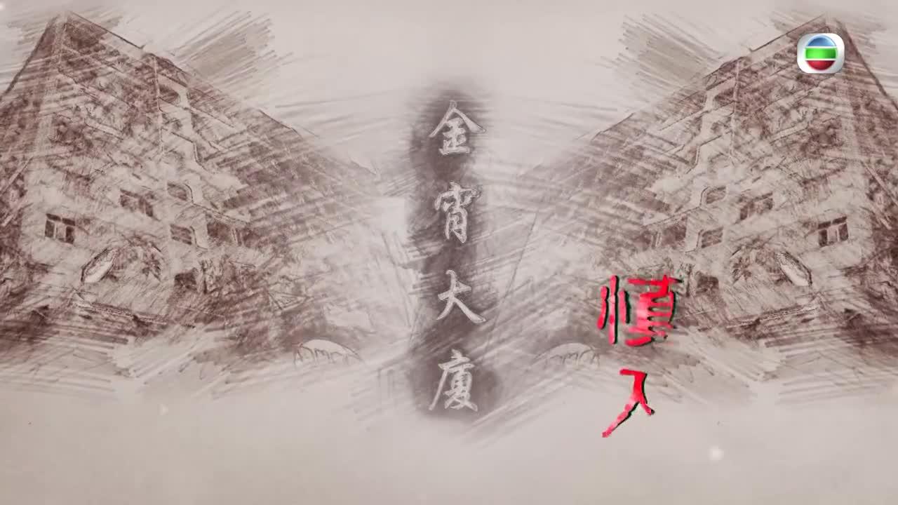 金宵大廈視帝貓靚寶 任摸唔嬲兼且勁好戲