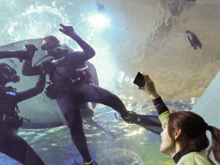 預告片: 重遊澳洲, 還有什麼想一起經歷?
